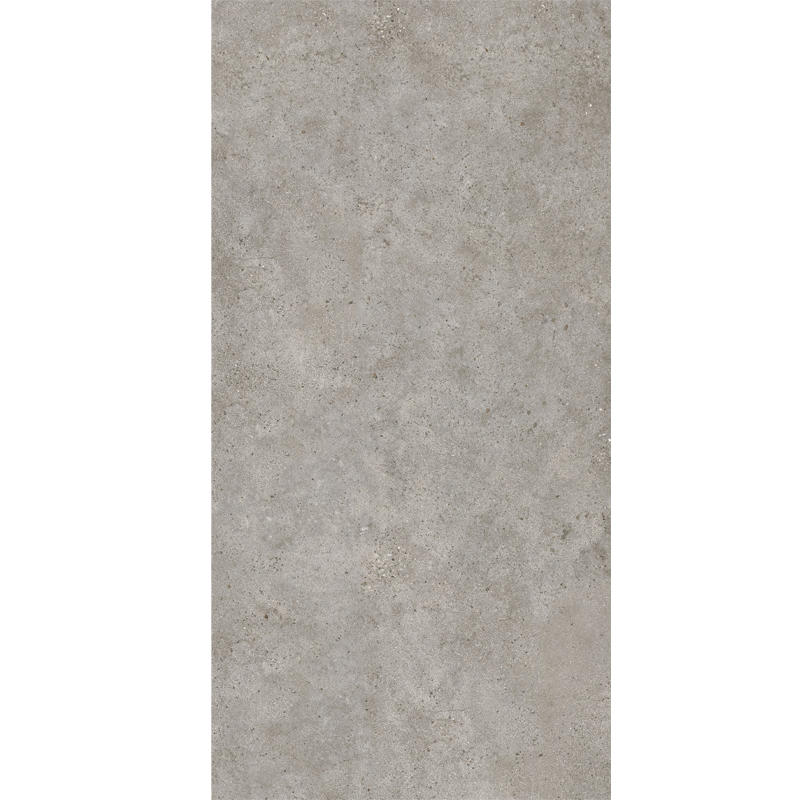 1200x2400 Grey Color Large Format Ceramic Tiles