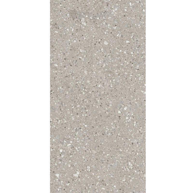 1200x2400 Big Floor Tile Large Light Gray Porcelain Tile